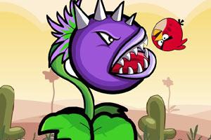 僵尸植物吃小鸟