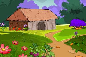 火鸡逃离村庄