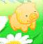 金猪升升高