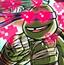 忍者神龟救公主