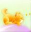 唯美猫咪气球旅行