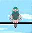 危险的小鸽子