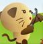 愤怒的大花猫