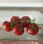 寻找西红柿