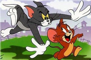 猫和老鼠的追逐