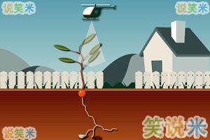 模拟植物中文版