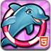 我的海豚表演6