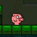 小猪冒险王